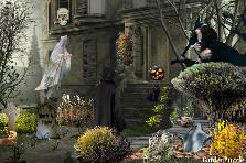 Garden design:It&#039;s almost Spooky time