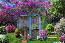 Garden design:Blue House