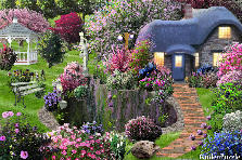 Garden design:All in a Picture