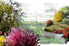 Garden design:watercolor