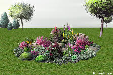 Garden design:flowers rockery