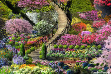 Garden design:Stairway from Paradise to Bliss