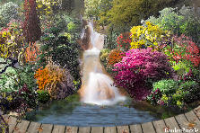 Garden design:Small Waterfall