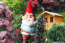 Garden design:gnome tells ....