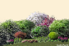 Garden design:11