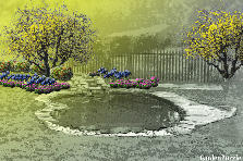 Garden design:Our pond