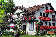 Garden design:House with flowers