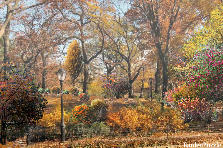 Garden design:Central Park