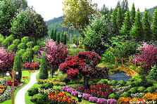 Garden design:beautiful scenery