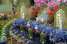 Garden design:For Lena;)