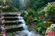 Garden design:The Old Brook Staircase