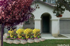 Garden design:Romero front yard