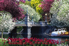 Garden design:Romantic sailing by canal