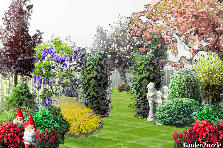 Garden design:Spring is in the air