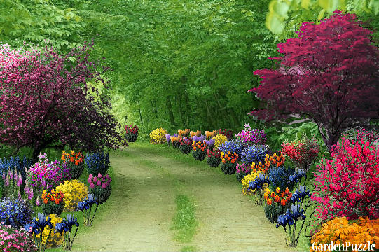Colorful path to walk gardenpuzzle online garden for Mg garden designs
