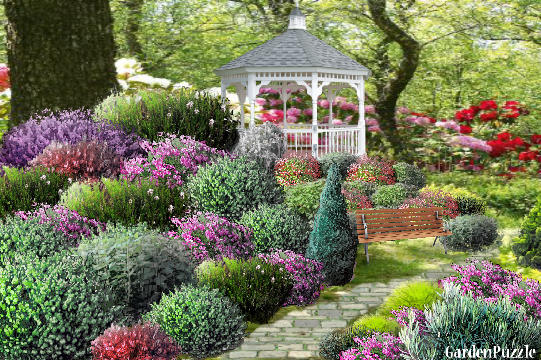 Garden Design With Shrubs : Alanna s shrub garden gardenpuzzle planning tool