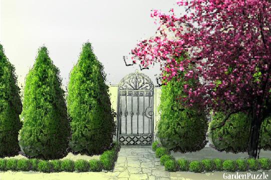 Garden design:ureduvanje dvor - Spring
