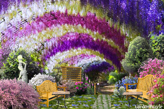 Flower arch gardenpuzzle online garden planning tool - Flower and lawn landscaping ideas ...