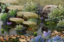 Garden design:Canción africana